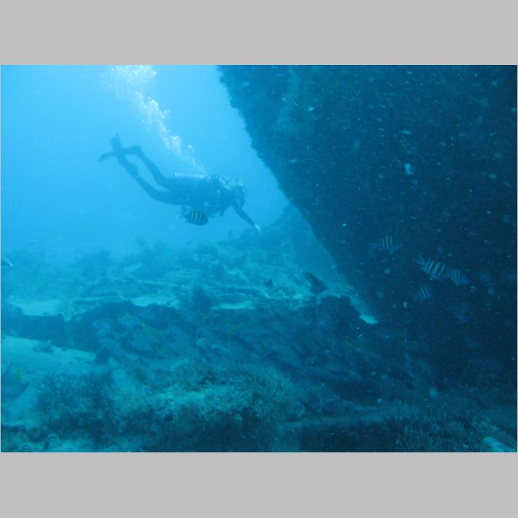 Dive_10-July-2010_PuraVida_Mizpah-5726.JPG
