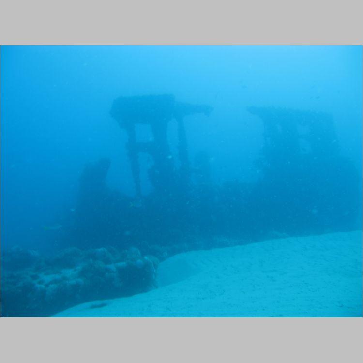 Dive_10-July-2010_PuraVida_Mizpah-5736.JPG