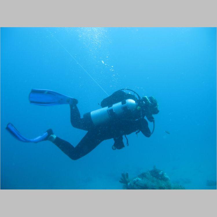 Dive_10-July-2010_PuraVida_Mizpah-5739.JPG