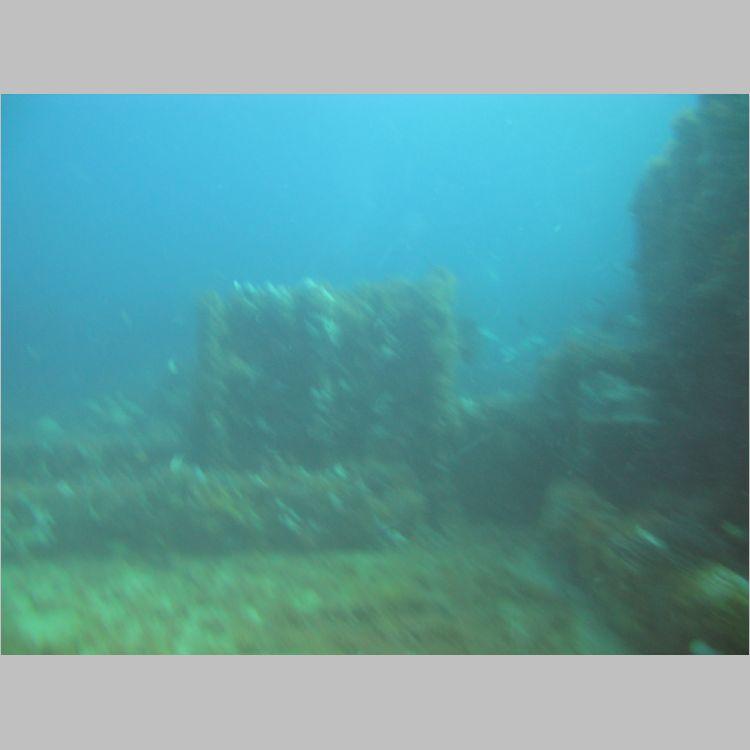 Dive_10-July-2010_PuraVida_Mizpah-5745.JPG