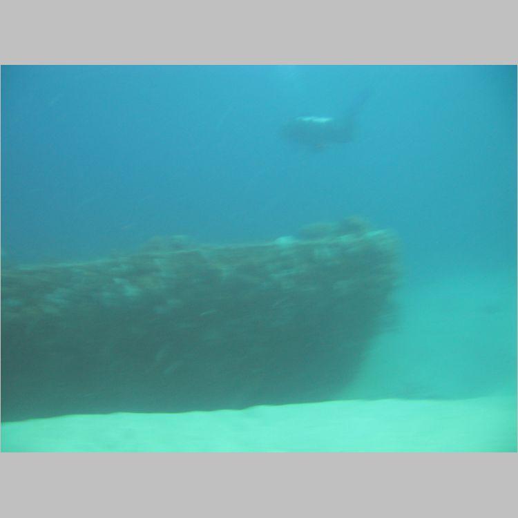 Dive_10-July-2010_PuraVida_Mizpah-5750.JPG
