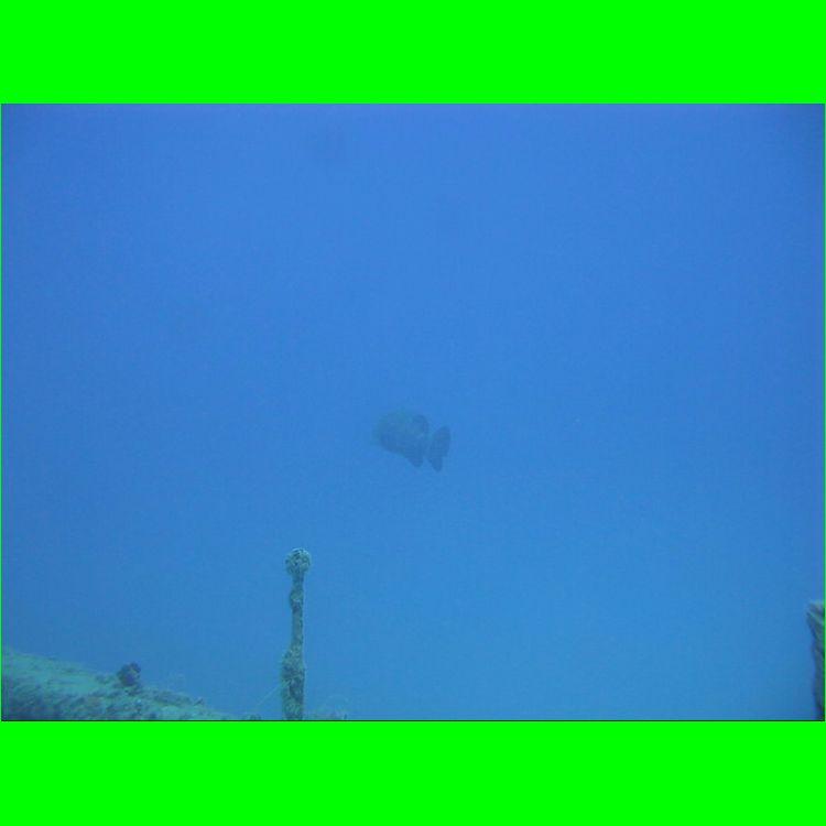 28-Aug-2010_Thunderbolt_MVI_6280.AVI