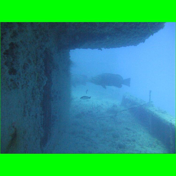 28-Aug-2010_Thunderbolt_MVI_6329.AVI