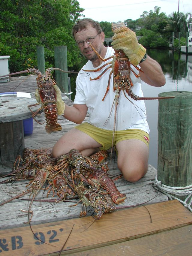 Diving for Lobster in Florida