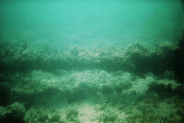 Urca de Lima Dive
