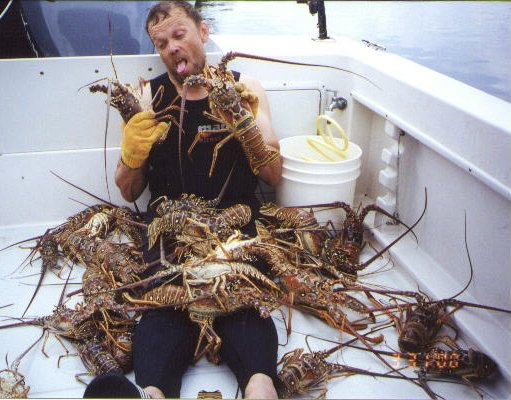 News Flash - LOBSTERS ATTACK THE IRISHMAN
