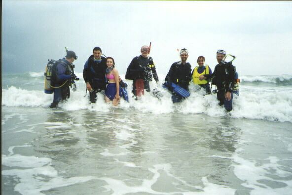 Beach Dive Pictures