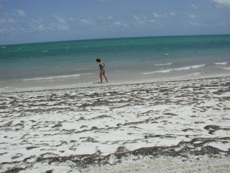 Playing in the Florida Keys